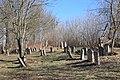 Єврейське кладовище Жабокрич3.jpg