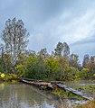 Башкирия. д. Байсакалово. Река Белая. Начало тропы в природный парк Иремель. (2).jpg