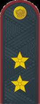 Генерал лейтенант ФСИН №.png