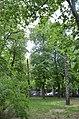 Дендропарк імені Богомольця. Київ. Фото 5.jpg