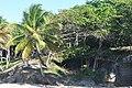 Доминиканская Республика - panoramio (68).jpg