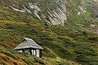 Екологічний пункт Карпатського біосферного заповідника біля підніжжя Говерли.jpg