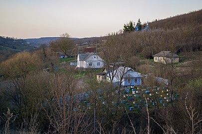Кам'яна Михайлівська церква на пагорбі за деревами.jpg