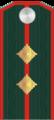 Капитан РОА.png