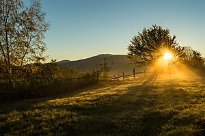 Карпатський національний природний парк - сонячний ранок.jpg