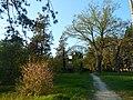 Одеса, Ботанічний сад, Французький бульвар 04-2018 03.jpg