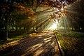 Осінні алеї в парку ім.Чекмана.jpg