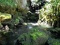 Посебни (геолошки) резерват природе Говјештица, Бања Стијена и Кањон Праче 33.jpg