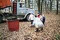 Прибирання Гришківого лісу 6.jpg