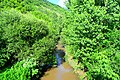 Река Бели Лом.jpg