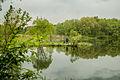 Рыбаки на озере.jpg