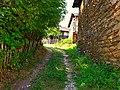 Сокак низ село Растеш.jpg