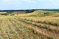Спуск с горы Уртатау в восточном направлении. Видна гора Шагиртау - panoramio.jpg