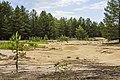 Экологическая тропа. Якша MG 8843.jpg