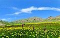 مناظرزیبای کوه سهند مراغه - panoramio (3).jpg