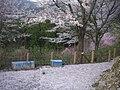 うつぶな公園 - panoramio (24).jpg