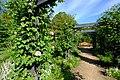 えこりん村 銀河庭園(Ekorin village, Galaxy Garden) - panoramio (13).jpg
