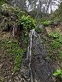 やちぶき滝 - panoramio.jpg