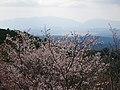 吉野山 高城山展望台からの眺め 2013.4.09 - panoramio.jpg
