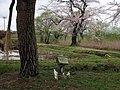 大谷地池の祠 - panoramio.jpg