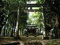 太田窪氷川神社 Daitakubo Hikawa shrine - panoramio.jpg