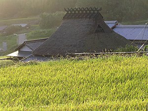 Minka - Decorative roof projections on the ridge of a thatched roof
