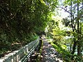 福山水圳步道 Fushan Irrigation Ditch Trail - panoramio.jpg