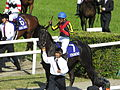 第149回天皇賞 - 149th Tenno Sho Spling (GI) - Kyoto Racecourse (May 4, 2014) (14132634093).jpg