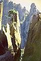 黄山d - panoramio.jpg