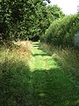-2018-08-15 Paston Way Footpath in the parish of Gimingham (2).JPG