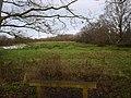 -2021-01-18 Rough pasture land, East Ruston, Norfolk.jpg