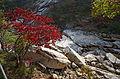 0405 - Nordkorea 2015 - Kumgang Gebirge (22340799543).jpg