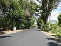 09394jfBinalonan San Manuel Pangasinan Barangays Roads Landmarksfvf 04.JPG