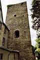 11RK-Burg Langenau-mittelalterlicher Bergfried.jpg