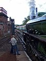 1306 Mayflower at Barrowhill (9).jpg