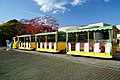 141115 Hyogo prefectural Ako Seaside Park Japan02n.jpg