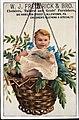 1880 - W J Frederick & Brother - Trade Card 2.jpg