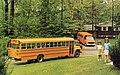1976 Wayne Lifeguard and Busette School Buses.jpg