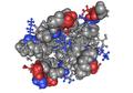 1KS0 human fibronectin02.png