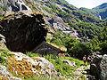 2001 07 07 Aurlandsdalen Almen 04.jpg