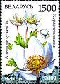 2009. Stamp of Belarus 13-2009-05-26-m-02.jpg
