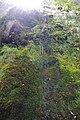 2012-10-26 15-31-29 Pentax JH (49283579222).jpg