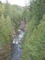 2012.03.25 Koksilah River in spring.jpg