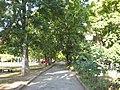 2012 - panoramio (342).jpg