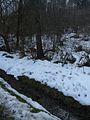 20150219 69 Wienerwaldsee (Large) (16394745070).jpg