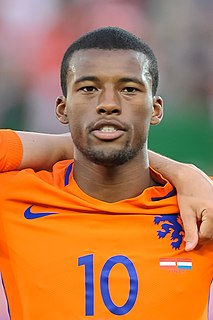 Georginio Wijnaldum Dutch association football player