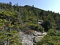 2017-09-11 11 22 05 View east along the Maple Ridge Trail at about 3,350 feet above sea level on the western slopes of Mount Mansfield within Mount Mansfield State Forest in Stowe, Lamoille County, Vermont.jpg
