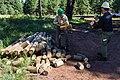 2017 Employee Work Day, Mountainaire (36320517150).jpg