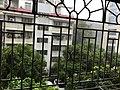 2018 super typhoon Mangkhut in Shenzhen 1.jpg