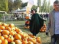 3. Bucharest, Romania. Pumpkin Fest. Primul Festival de Halloween din Romania. Oct. 2019. (Frumoasa vrajitoare a ales un dovleac).jpg
